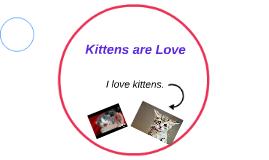 I love kittens.