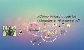 Copy of ¿Cómo se distribuyen los nutrientes en el organismo?
