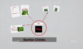 Bambu e Oliveira