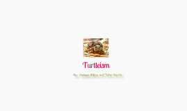 Turtleism
