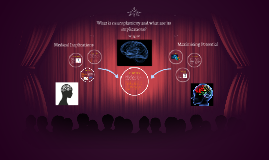 What is neuroplasticity and what are its implications?