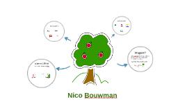 Nico Bouwman