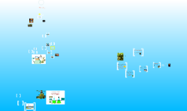 Copy of Copy of Ecology