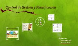 Control de Gestión y Planificación