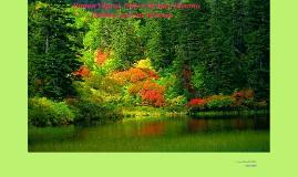 Ilıman Yaprak Döken Orman Biyomu