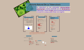 Copy of Historia Natural de la Tuberculosis
