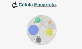 Célula Eucarionte.
