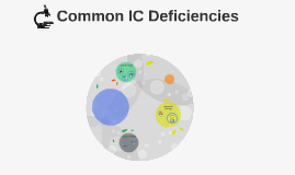 Common IC Deficiencies