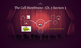 The Cell Membrane - Ch. 3 Section 3