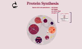 Proteinsyntes till elever i Nk1b - en omfattande presentation