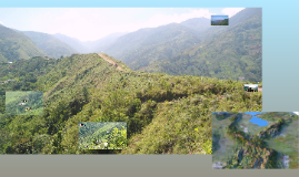 Reporte Visita Sierra del Perija
