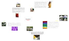 Copy of Fibras Textiles