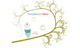Copy of TOK Sense perception affected by culture