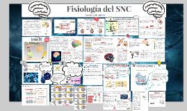 Fisiologia del SNC