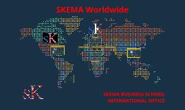 SKEMA WORLDWIDE - INTERNATIONAL PARTNERS