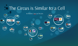 The Circus is Similar to a Cell
