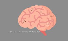 Cultural Influence on Behavior