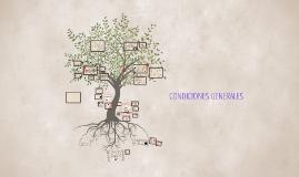 Copy of CONDICIONES GENERALES