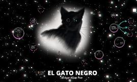 POI_GATO NEGRO_KELVIN