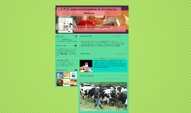 l p q comercializadora de productos lacteos