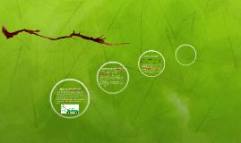 Surgimiento del biodiesel