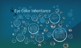 2015-2016 Eye Color Inheritance