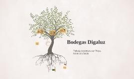 Bodegas Digalu