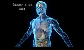 Transplante de órganos y rechazo inmune