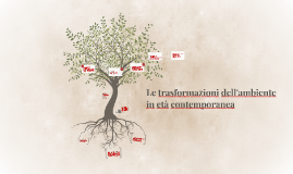Le trasformazioni dell'ambiente in età contemporanea