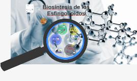 BIOSÍNTESIS DE ESFINGOLÍPIDOS