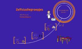 Copy of Zelfstudiegroepjes