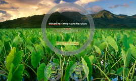 Successful Engagement of BioBanking Among Native Hawaiians