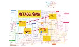 Metabolismen