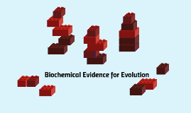 Biochemical Evidence for Evolution