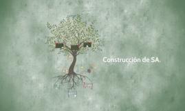 Ficha técnica de la SA.
