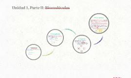 I Medio, Biologia, Unidad 1, Parte II: Biomoleculas