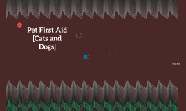 Pet First Aid [Cats and Dogs]