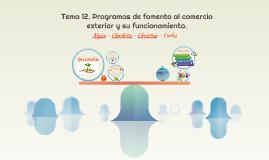 Tema 12. Programas de fomento al comercio exterior y su func