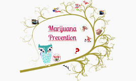 Marijuana HCPSS