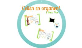 Cellen en organen! - 1 Havo Vwo