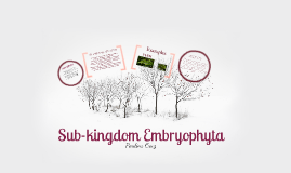 Sub-kingdom Embryophyta
