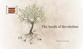 The Seeds of Revolution