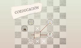 METODOLOGÍA DE COEDUCACIÓN: CONSTRUCCIÓN SOCIAL DE LOS ROLES