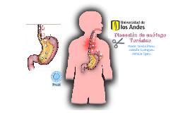 Disección de esófago toracico