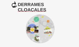 DERRAMES CLOACALES - Santa Rosa (La Pampa)