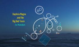 Daphnia Magna and the Big Bad Toxin