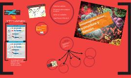 Imunoglobulinas, estructura y función