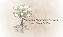 MNMN Strategic Plan 2017