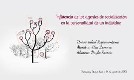 Copy of Influencia de los agentes de socialización en la personalida
