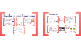1.3: Biochemical Reactions